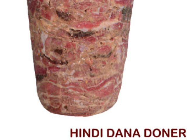 Hindi Dana Doner